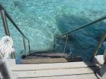 Bonaire May10 041