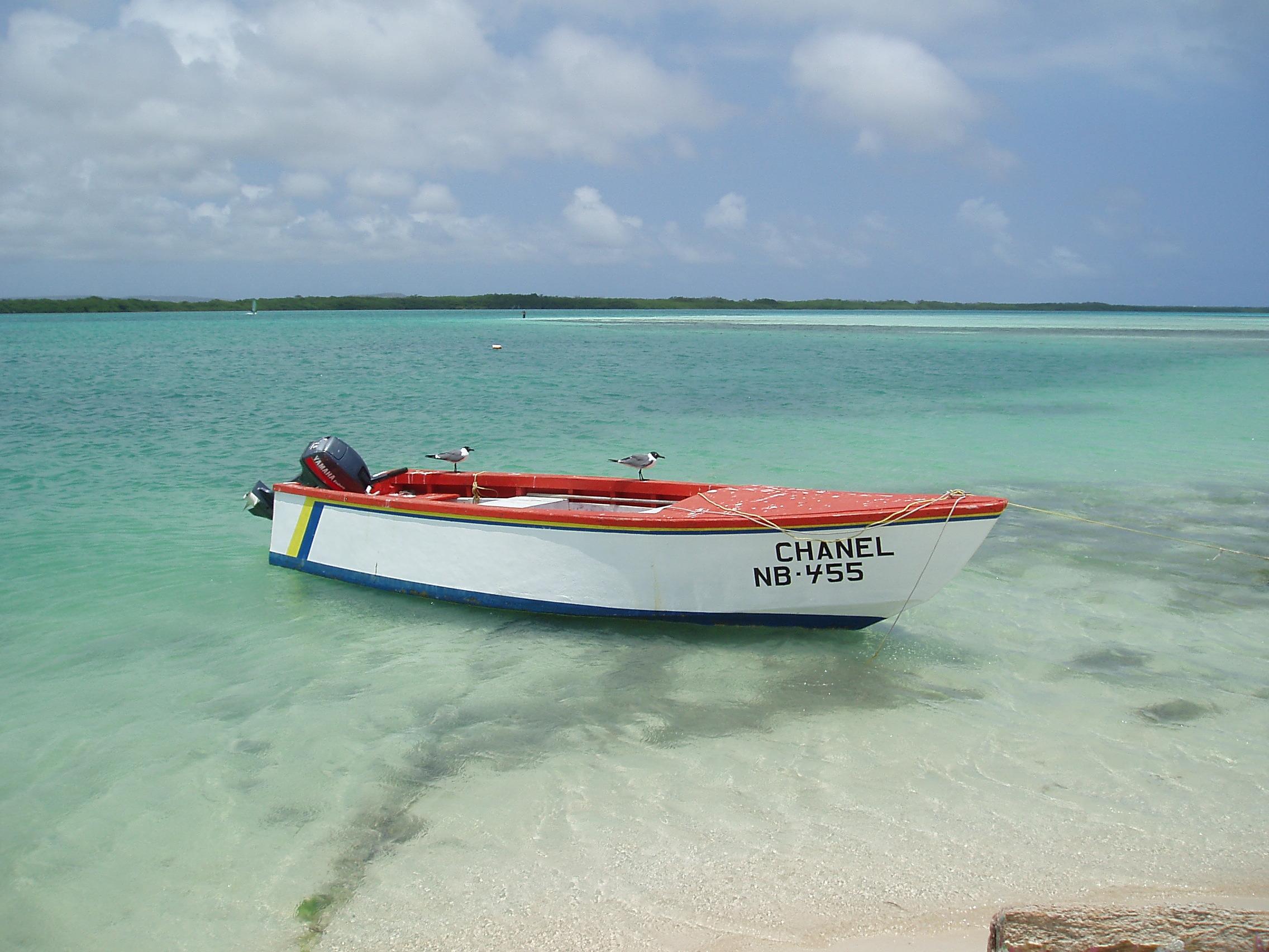 Activities bonaire bliss page 3 - The dive hut bonaire ...